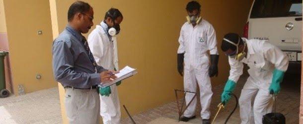 افضل شركة رش مبيدات بنجران 0531493037 بالضمان (دقة فى العمل)