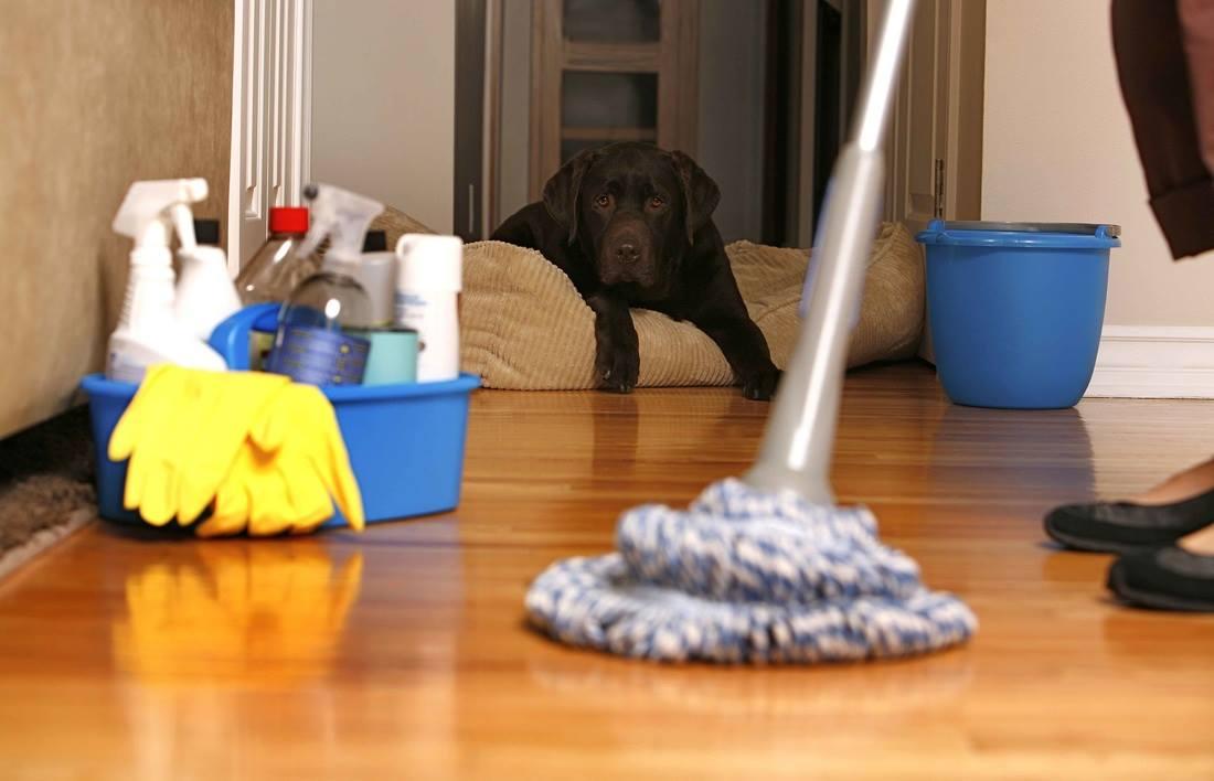 ارخص شركة تنظيف بالباحة 0531493037 (أقوي خدمات التنظيف) – شركة التميز